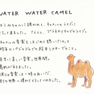 WATER WATER CAMEL